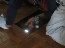 床を少し解体して中の状態を確認しています。