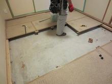 解体作業開始です。 浮き床をつくっていきます。