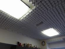 天井にはぎっしりと卵のパックが取り付けられています。