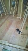 浮き床を施工し、上に下地を組んでいきます。