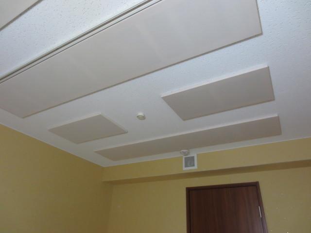 天井は吸音仕様になっています。天井からの辺境を抑えることでホールで演奏しているような響きになります。